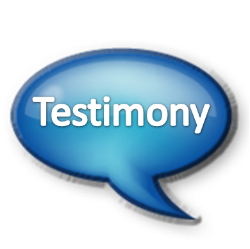 Board Governance Model Testimony RelationshipModel.com